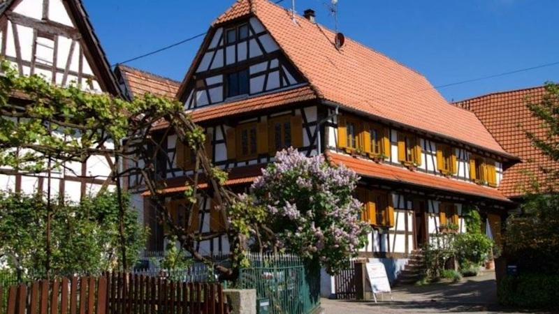France elects chocolate box Hunspach village as its 2020 favourite