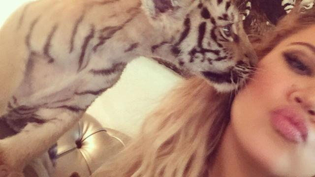 """Khloe Kardashian just can't catch a break! After getting slammed for posting a pic of her wearing a niqab face covering during her trip to Dubai, Khloe also came under fire on Thursday when she posted a selfie of her cuddling with a tiger cub. <strong> PHOTOS: Stars Pose With Their Pets </strong> The image caused some uproar among those fighting for animal rights who felt the pic promoted the captivity of wild creatures. """"We're disappointed to see yet another celebrity posing with a wild animal,"""" Silia Smith of World Animal Protection told <em>Daily Mail</em>. """"Tiger cubs belong in the wild, with their mothers -- not in captivity for use as entertainment or photo props."""" Khloe posed for pics with an array of animals, including snaps with a stingray and an orangutan, but it was the cub photo that seemed to anger activists the most. """"Not slamming Khloe at all. I love her and her ethics. I hate the practice of animal exploitation and tourism,"""" one commenter said of the image. """"This is just disgusting,"""" another Instagram user wrote. """"And I was so disappointed to see you wearing fur in the last [ <em>Keeping Up with the Kardashians</em>] episode. I knew it was all marketing that your were 'against it' but still sad about it."""" <strong> WATCH: New <em>Keeping Up With The Kardashians</em> Preview Shows Terrifying Car Crash Footage </strong> """"I thought you were against it? All for a photo op?"""" another comments reads. """"Disgusting... You should be ashamed!!!"""" Meanwhile, Khloe's estranged husband Lamar Odom sent out his first tweet in nearly a year on Thursday. Sharing some artwork of himself on Instagram, the M.I.A. basketball pro wrote: """"Appreciate the love."""" <strong> How do you feel about Khloe posing with a tiger cub? </strong> <em>For more on the 30-year-old reality star's other selfie controversy, check out this video:</em>"""