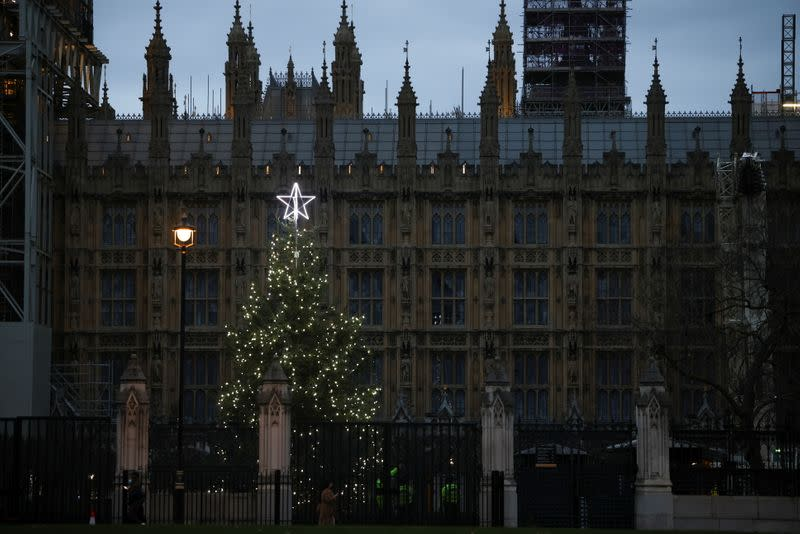 A Christmas tree illuminated by lights can be seen within the grounds of the Houses of Parliament, amid the coronavirus disease (COVID-19) outbreak, in London