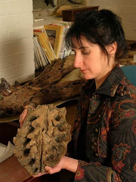 Judyth Sassoon holds part of the snout of the Westbury pliosaur; the holes on the specimen are tooth sockets