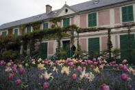 Tulips and blue forget-me-nots wait in the garden in front of Claude Monet's house, French impressionist painter who lived from 1883 to 1926, ahead of the re-opening, in Giverny, west of Paris, Monday May 17, 2021. Lucky visitors who'll be allowed back into Claude Monet's house and gardens for the first time in over six months from Wednesday will be treated to a riot of color, with tulips, peonies, forget-me-nots and an array of other flowers all competing for attention. (AP Photo/Francois Mori)