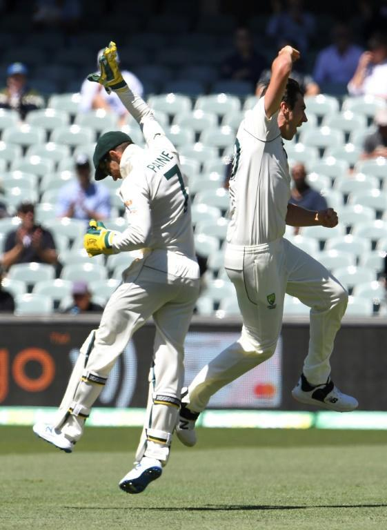 Pat Cummins (right) and Australia captain Tim Paine celebrate a wicket during India's collapse to their worst Test score
