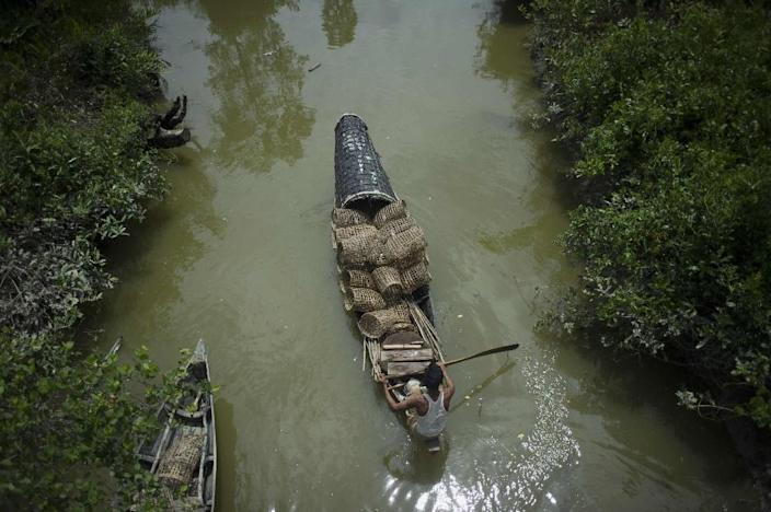 A fisherman paddles his boat in a creek between Myanmar's and Bangladesh's border, on June 5, 2015 (AFP Photo/Ye Aung Thu)
