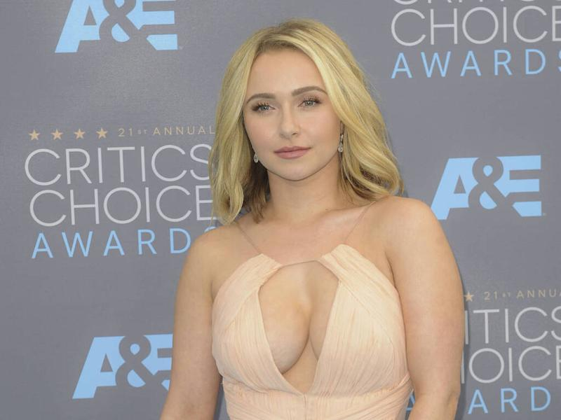 Hayden Panettiere's former boyfriend charged with domestic violence and assault