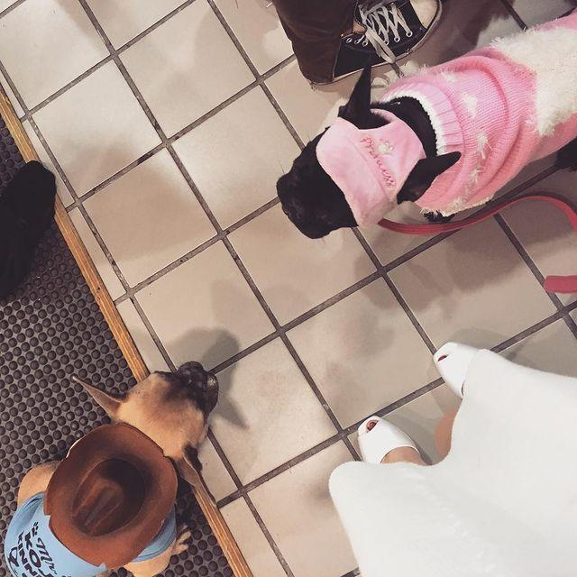 """<p>The 2015 holidays brought a """"Christmas vacation with the kids,"""" a.k.a. Koji and Asia.</p>"""