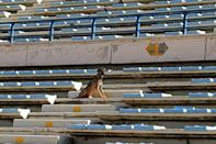 Lebanon's top football stadium once hosted some of the world's best players, but today it has become a neglected, blast-hit arena (AFP/ANWAR AMRO)