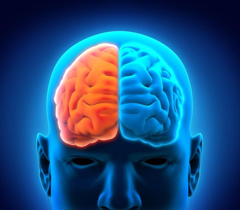 """Your brain has <a href=""""https://www.health.harvard.edu/blog/right-brainleft-brain-right-2017082512222"""" rel=""""nofollow noopener"""" target=""""_blank"""" data-ylk=""""slk:two hemispheres"""" class=""""link rapid-noclick-resp"""">two hemispheres</a>, which function more or less independently. The left brain is often associated with language and logic, while the right brain is linked to emotion and creativity."""
