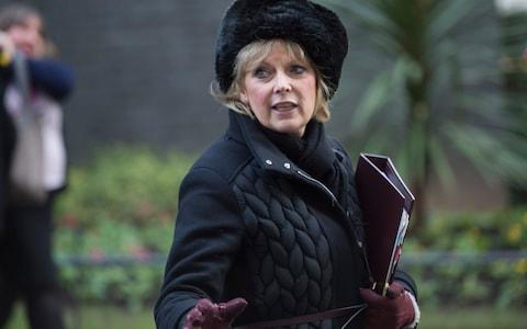 Anna Soubry, the Conservative MP, who has called for a second referendum - Credit: David Rose