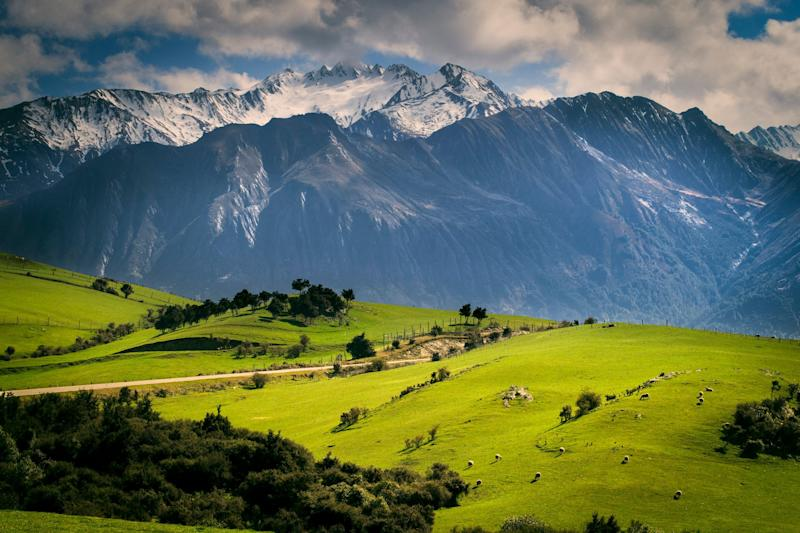 Kiakoura, New Zealand. <i>(Photo: Getty)</i>