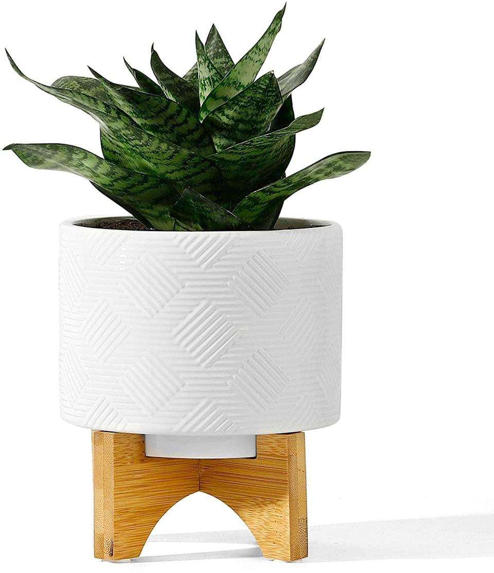 <p>This <span>Potey Ceramic Planter</span> ($25) will add texture to your indoor plant garden.</p>