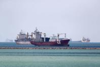 Ships are seen at the entrance of Suez Canal, where stranded container ship Ever Given run aground