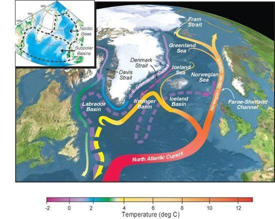 Surface currents that form a portion of the Atlantic Meridional Overturning Circulation.