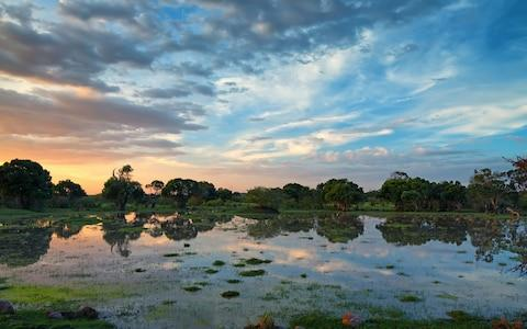 The Okavango