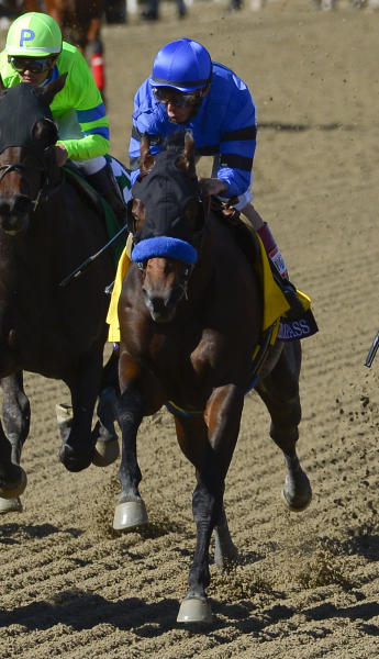 Secret Compass ridden by jockey John Velazquez leaves the starting gate during the Breeders' Cup Juvenile Fillies horse race at Santa Anita Park Saturday, Nov. 2, 2013, in Arcadia, Calif. Secret Compass broke down later in the race. (AP Photo/Mark J. Terrill)