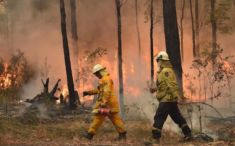 Fires have ripped through an area that is three times the size of Wales - AFP