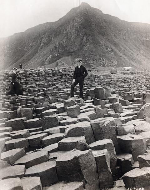 A dashing visitor to Giant's Causeway - Credit: George Rinhart