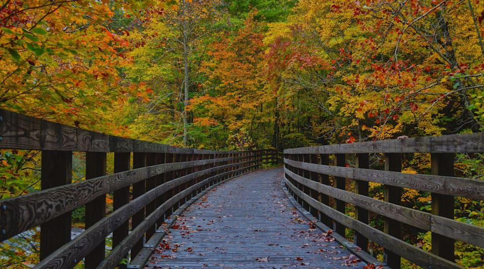 "<p>Nestled in the Blue Ridge Mountains of Virginia is this small town (we're talking a population of 814 people) that is known as ""Trail Town."" Hikers and bikers seek it out since it's at the cross roads of some of the most beautiful trails in the state.</p>"