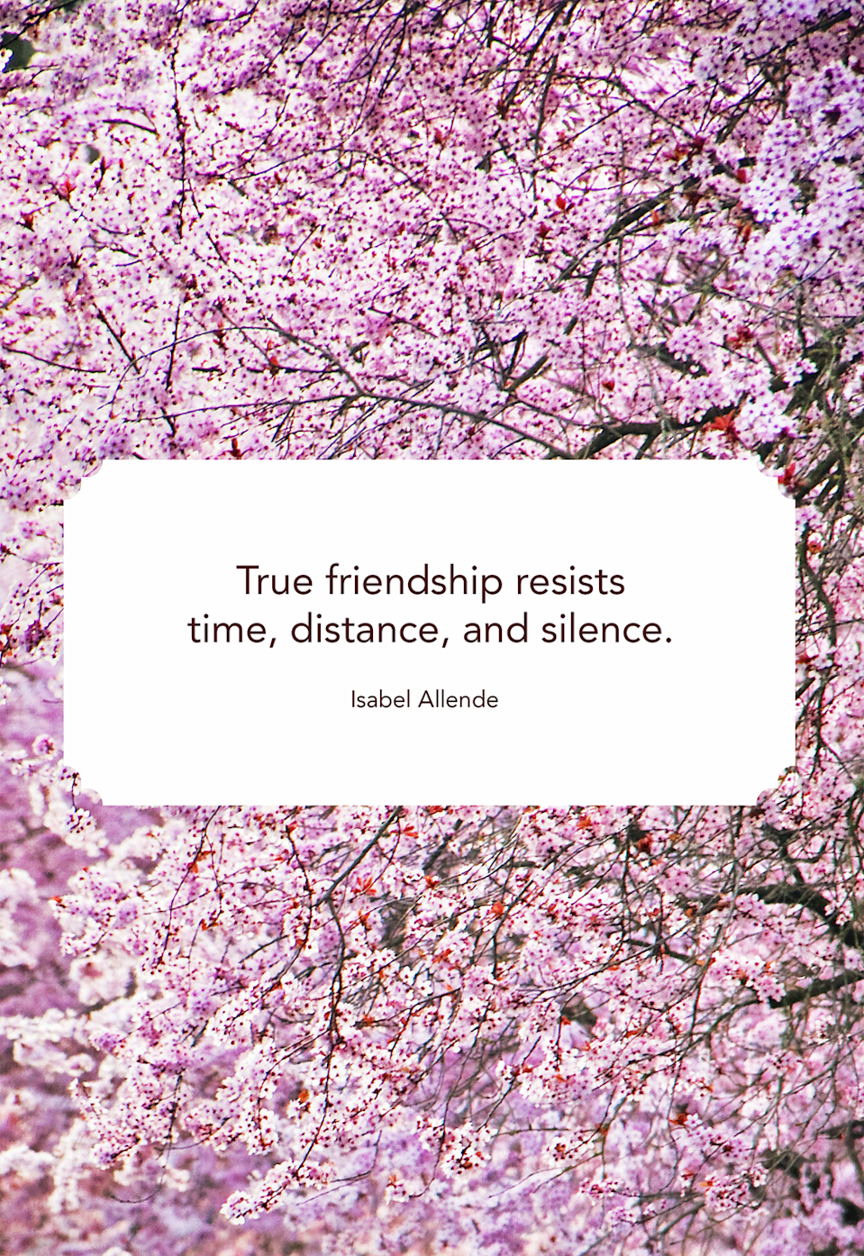 "<p>""True friendship resists time, distance, and silence.""</p>"