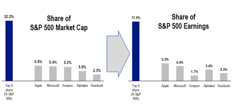 FAAMG represent a huge share of S&P 500 earnings.(Fundstrat)