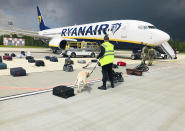 FILE - In this May 23, 2021, file photo provided by ONLINER.BY, security use a dog to check the luggage of passengers on the Ryanair jet that carried opposition figure Raman Pratasevich, traveling from Athens to Vilnius, Lithuania. The plane was diverted to Minsk, Belarus, after Belarusian flight controllers told the crew that there was a bomb threat against the plane. Pratasevich, who ran a channel on a messaging app used to organize demonstrations against authoritarian President Alexander Lukashenko, left his homeland in 2019 to try to escape the reach of the Belarusian KGB. Pratasevich was arrested upon landing in Minsk and faces 15 years in prison on charges of inciting disturbances. (ONLINER.BY via AP)