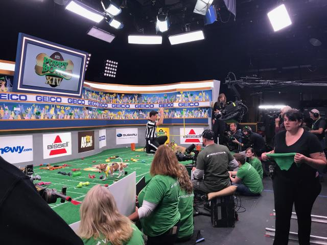 "<p>Has Schachner ever been recognized on the street as the Puppy Bowl referee? ""Only when I'm in my stripes. Or blowing a whistle. Which is every day,"" he says.<br>(Photo: Leah Neuberth/Yahoo Entertainment) </p>"