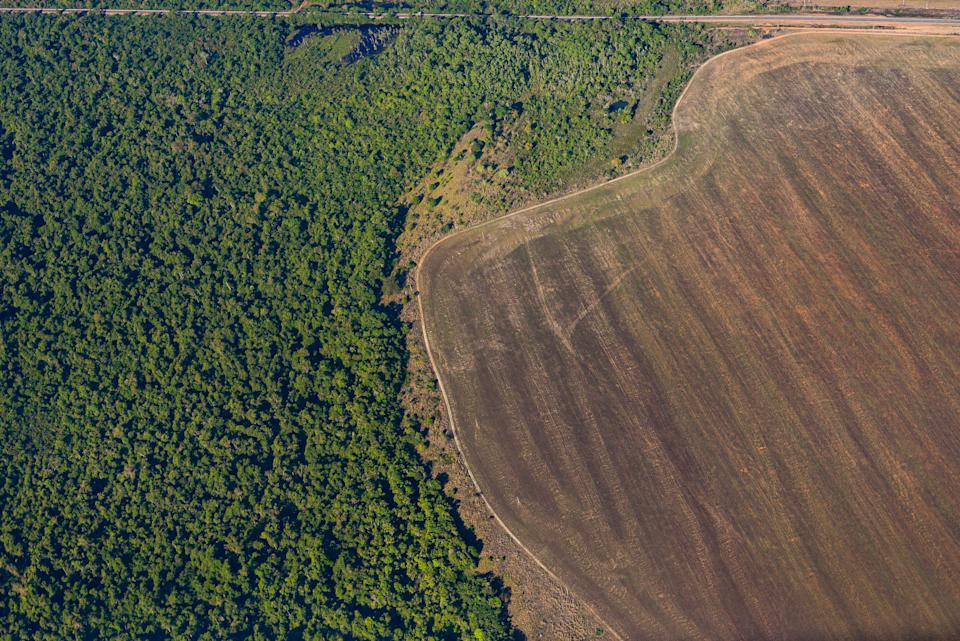 Aerial view of deforestation in the Amazon caused by the expansion of agricultural areas. - Reserva Legal