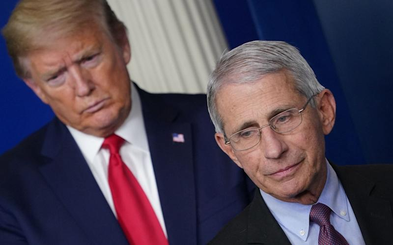 Donald Trump retweeted criticism of Dr Fauci - AFP