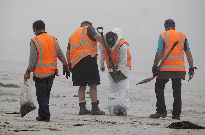 TAURANGA, NEW ZEALAND - OCTOBER 11: Volunteers collect the initial oil coming onto the Mount Maunganui shore on October 11, 2011 in Tauranga, New Zealand. Up to 350 more tonnes of oil has been spilled from the 'Rena', which is stricken off the coast of Tauranga today, after the ship shifted position on the reef. The crew was evacuated and are waiting for a break in rough weather to return to pumping oil off the ship to the barge Awanuia. Officials are warning that if the ship breaks up and releases the 1,700 tonnes of fuel on board it will be the worst maritime disaster for New Zealand in decades. (Photo by Bradley Ambrose/Getty Images)