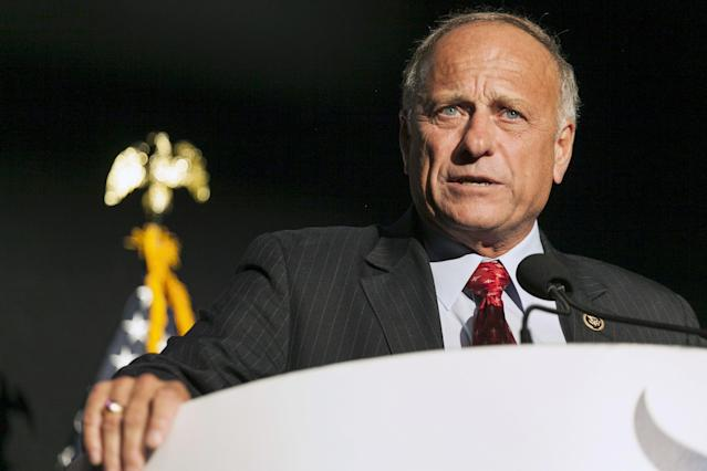 Rep. Steve King (R-Iowa) speaks at the Iowa Faith and Freedom Coalition Forum in Des Moines, Iowa, Sept. 19, 2015. (Brian C. Frank / Reuters)
