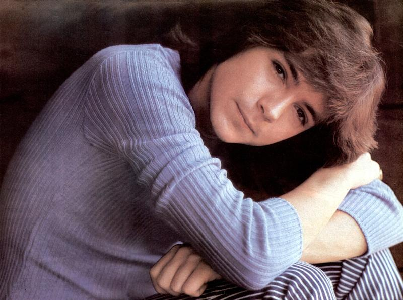 """David Cassidy rose to fame on the TV show """"The Partridge Family."""""""