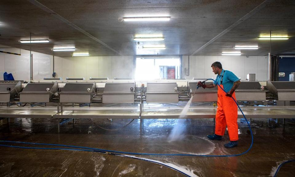 Cleaning up in Grimsby fish market.