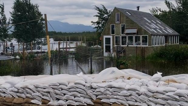 'It's very, very hard to see it be threatened this way,' said Florian Lemphers of his home at Shallow Bay. (Gordon Loverin/CBC - image credit)