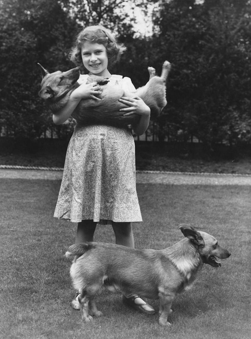 Queen Elizabeth II with two corgis at her home at 145 Piccadilly, London, 1936.