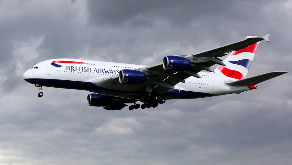 <em>The British Airways flight was grounded over a bedbugs invasion (Rex/stock photo)</em>