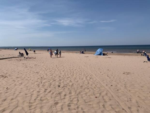 A period of extreme heat in early June had Islanders dipping into the ocean early. (Laura Meader/CBC - image credit)