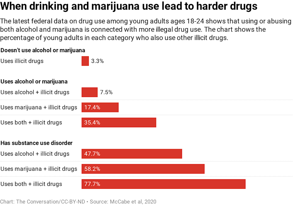 Chart of alcohol and marijuana use with other illicit drugs