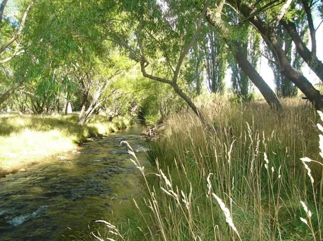<p>You'll be very close to the Twizel River.<br>(Airbnb) </p>