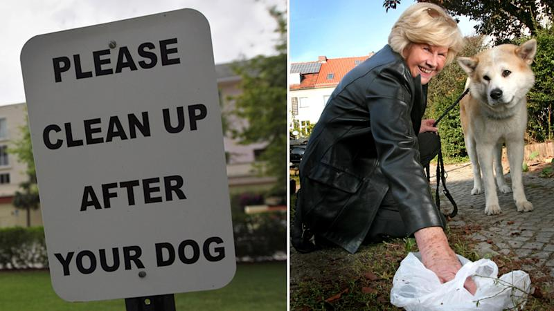 A sign reminding pet owners to pick up after their dogs and a dog owner doing the right thing.