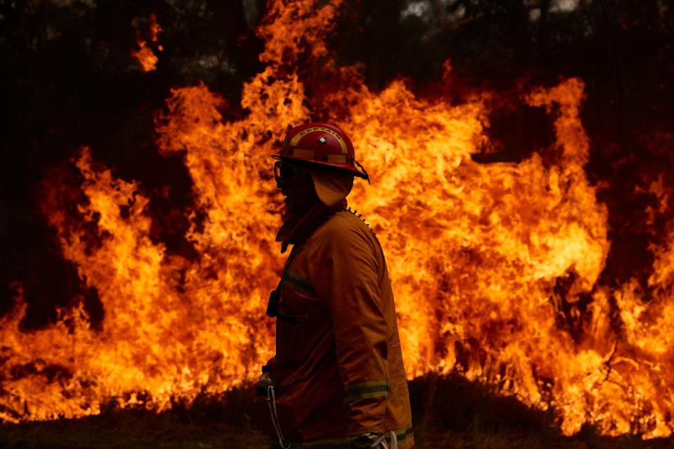 A CFA Member works on controlled back burns along Putty Road in Sydney, Australia.