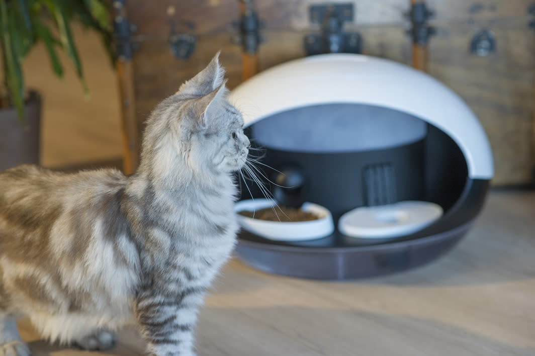 <p>A smart water and food dispenser for cats, the Catspad lets the owner control their kitty's snack rations from their smartphone. The device can even tell the difference between multiple cats using a microchip or collar tag. It'll even notify you when you need to buy more food. (Catspad) </p>