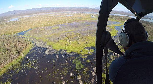 Two saltwater crocodiles were seen from the air in an aerial inspection of waterways near Mareeba. Source: Department of Environment and Heritage Protection