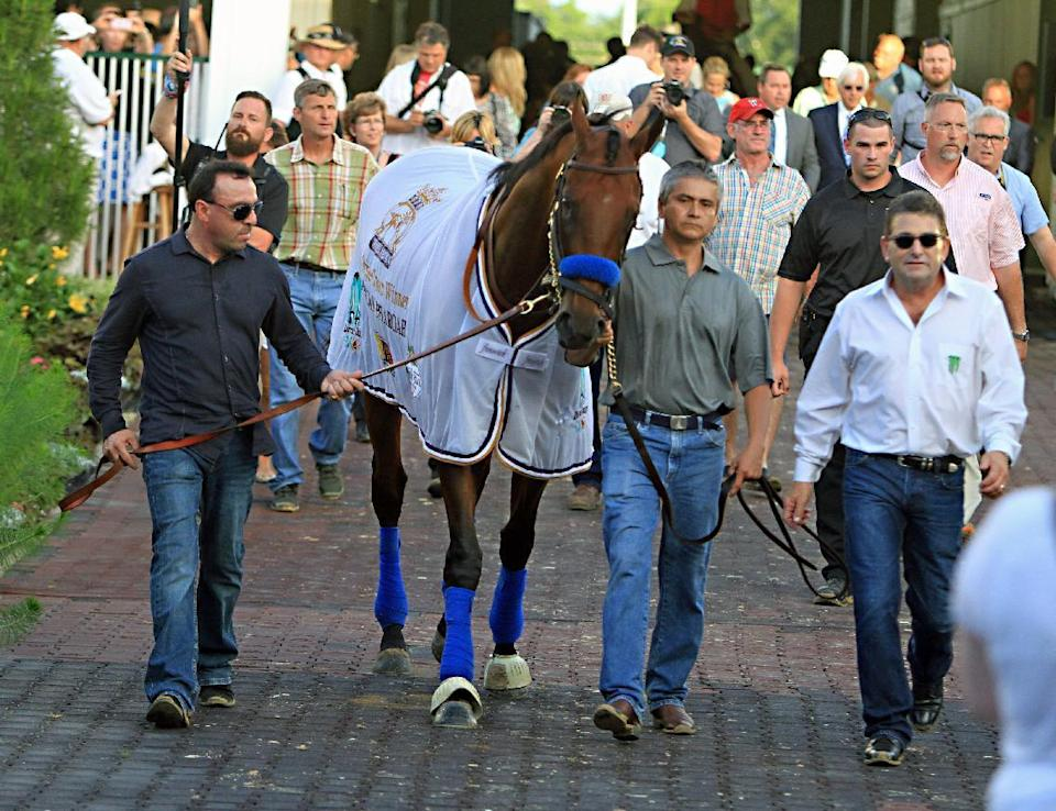 Triple Crown winner American Pharoah is led into the paddock at Churchill Downs in Louisville, Ky., Saturday, June 13, 2015 by groom Eduardo Garcia, second from right and exercise rider Jorge Alvarez, far left, after parading in front of the night racing crowd at the track. At far right is assistant trainer Jimmy Barnes. (AP Photo/Garry Jones)