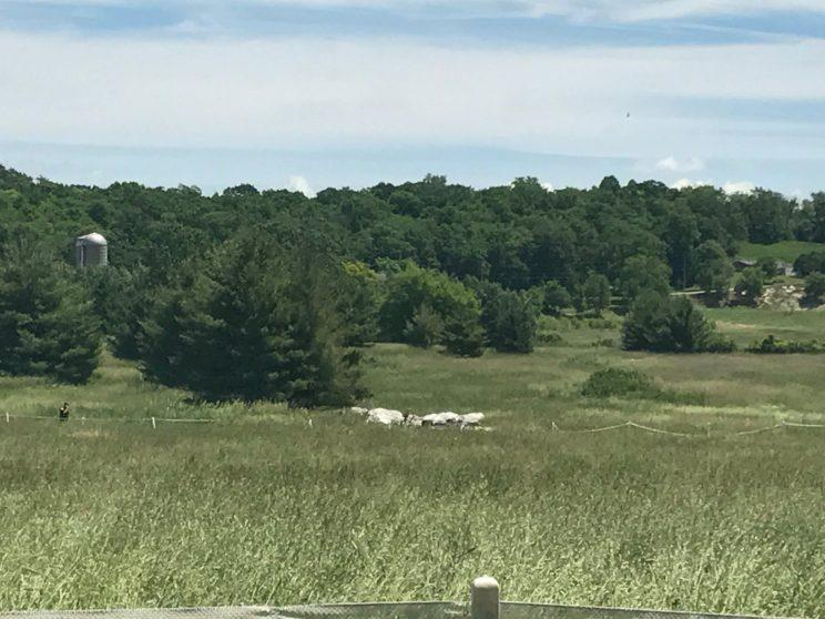 Remnants of a blimp that crashed near Erin Hills, site of the U.S. Open, can be seen in the distance. (Yahoo Sports)
