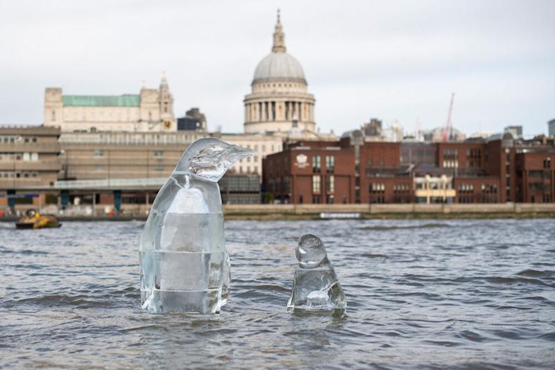 Greenpeace activists installed penguin ice sculpture in London. | David Mirzoeff/Greenpeace