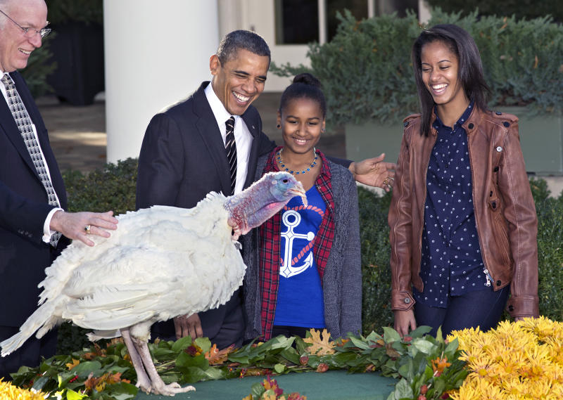 "President Barack Obama, with daughters Sasha (center) and Malia (right) carries on the Thanksgiving tradition of saving a turkey from the dinner table with a ""presidential pardon"" at the White House in Washington, Nov. 21, 2012. After the ceremony, ""Cobbler"" will head to George Washington's historic home in Virginia to be part of the ""Christmas at Mount Vernon"" exhibition. National Turkey Federation Chairman Steve Willardsen watches at left. (Photo: J. Scott Applewhite/AP)"