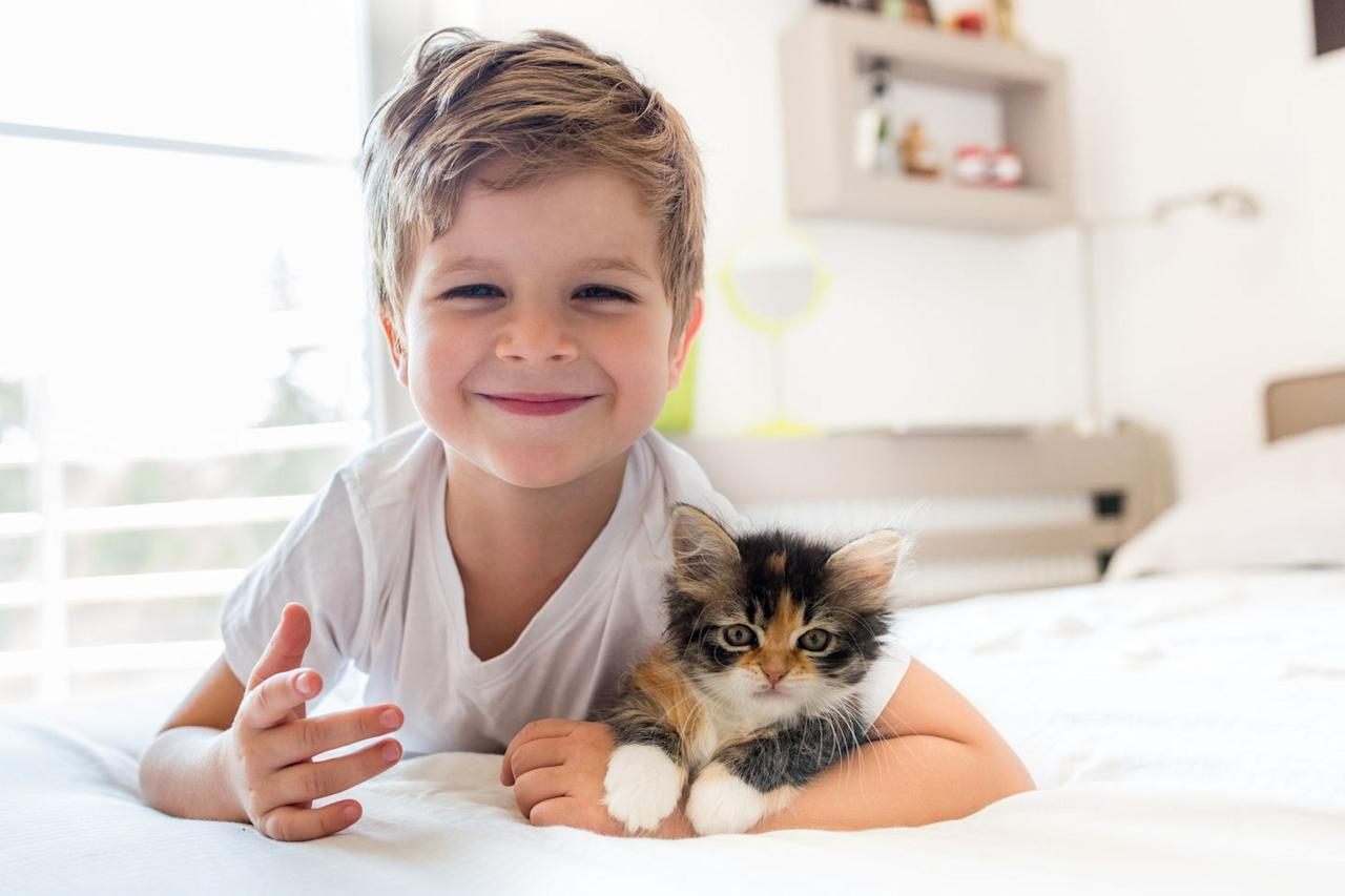 "<p>Cats can have a bunch of positive effects on children. <a href=""https://www.care.com/c/stories/6134/getting-a-domestic-cat-15-benefits-for-your/"" target=""_blank"">According to Care.com</a>, owning a cat can teach kids social skills, help them cope with traumatic situations, and even make them less likely to have allergies.</p><p><strong>RELATED:</strong> <a href=""https://www.goodhousekeeping.com/life/pets/g25360151/cat-quotes/"" target=""_blank"">25 Quotes Only Cat Owners Will Understand</a></p>"