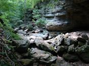 """<p>Nestled in the Buffalo National River park, you'll find the <a href=""""https://www.tripadvisor.com/Attraction_Review-g31867-d2617138-Reviews-Lost_Valley_Hiking_Trail-Ponca_Arkansas.html"""" rel=""""nofollow noopener"""" target=""""_blank"""" data-ylk=""""slk:Lost Valley Trail"""" class=""""link rapid-noclick-resp"""">Lost Valley Trail</a>, an Arkansas treasure that boasts fields of wildflowers, waterfalls that surge after rainstorms, and babbling brooks.</p><p><br><a class=""""link rapid-noclick-resp"""" href=""""https://go.redirectingat.com?id=74968X1596630&url=https%3A%2F%2Fwww.tripadvisor.com%2FAttraction_Review-g31867-d2617138-Reviews-Lost_Valley_Hiking_Trail-Ponca_Arkansas.html&sref=https%3A%2F%2Fwww.countryliving.com%2Flife%2Ftravel%2Fg24487731%2Fbest-hikes-in-the-us%2F"""" rel=""""nofollow noopener"""" target=""""_blank"""" data-ylk=""""slk:PLAN YOUR HIKE"""">PLAN YOUR HIKE</a></p>"""