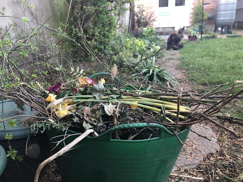 A garden waste basket in a back garden. More than a third of English councils have suspended collections of garden waste as they struggle to pick up rubbish amid staff shortages (PA Media): PA Media