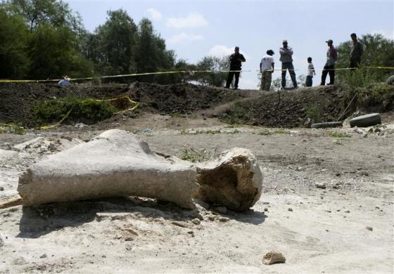 Residents stand near what is believed to be the bone of a mammoth, found three days ago at the dry river bed in the municipality of Manuel Doblado, in the Mexican state of Guanajuato June 12, 2012. Authorities from this municipality have cordoned off the area while awaiting the arrival of experts from the National Institute of Anthropology and History (INAH) to verify the authenticity of the fossil, according to local media.