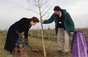 Princess Anne planted the last tree in the area in 2014, but it could be removed for houses. (Gov.UK)